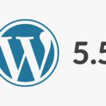 WordPress 5.5 erschienen