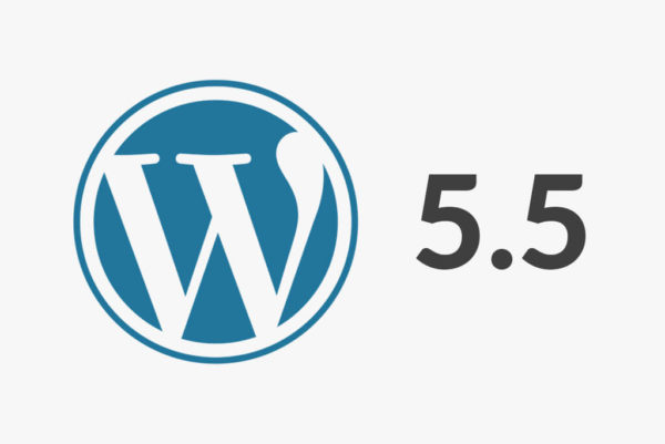 WordPress 5.5 erschienen